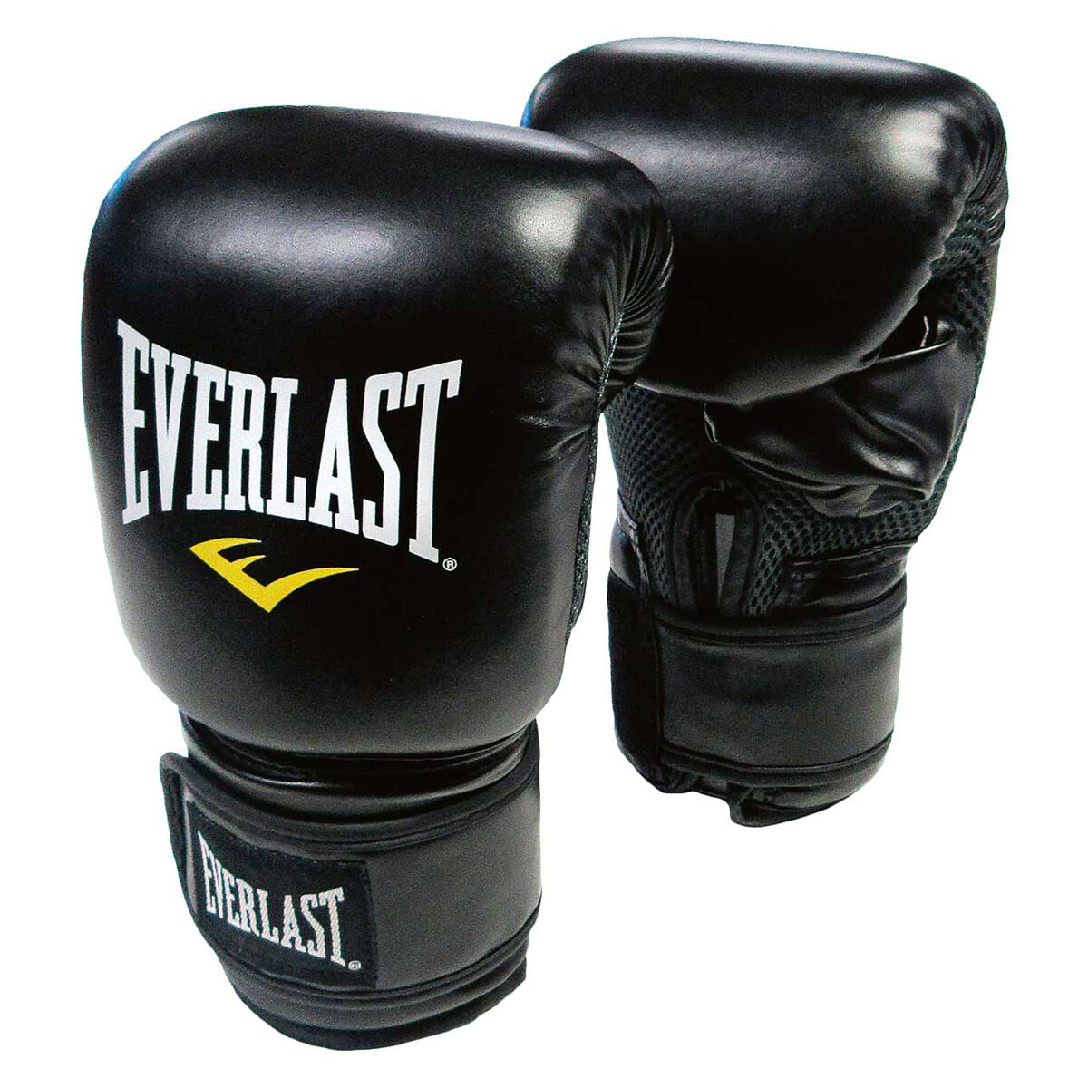 Everlast boxing bag and Adidas boxing gloves | Boxing