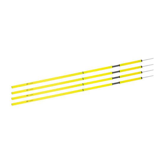 Terrasphere Agility Poles 4 Pack, , rebel_hi-res