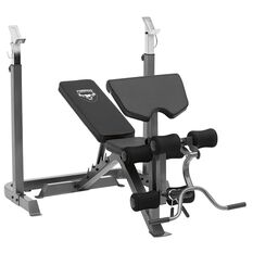 Torros Pro55 Deluxe Weight Bench, , rebel_hi-res