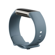 Fitbit Charge 5 Fitness Tracker Steel Blue, , rebel_hi-res