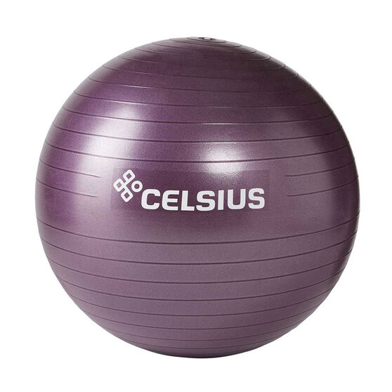 Celsius Fit Ball 65cm, , rebel_hi-res
