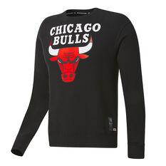 Chicago Bulls Mens Fleece Hoodie Black S, Black, rebel_hi-res