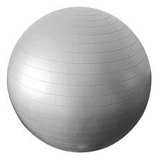 Celsius Anti Burst 55cm Fitness Gym Ball Purple 55cm, , rebel_hi-res