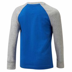 Nike Air Boys LS Raglan Tee Royal Blue / Grey 4, Royal Blue / Grey, rebel_hi-res