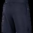 Nike Mens Flex Max 3.0 Shorts, Black, rebel_hi-res