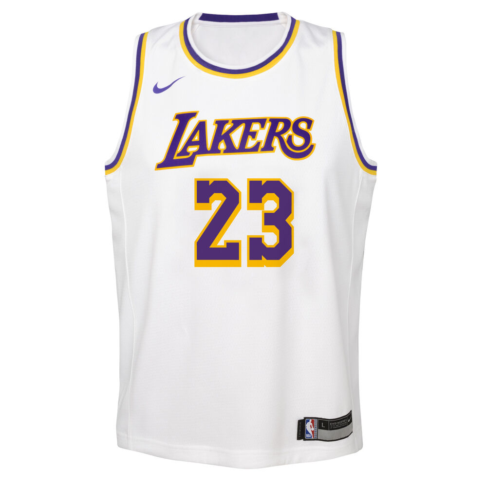 440ab4ab83a Nike Los Angeles Lakers LeBron James Association 2019 Kids Swingman Jersey  White / Blue L,