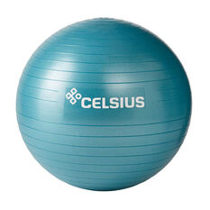 Celsius Fit Ball 55cm, , rebel_hi-res