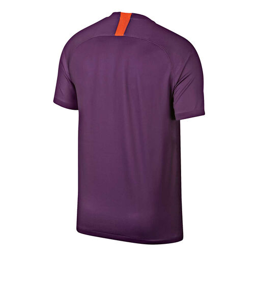 Manchester City 2018 / 19 Mens 3rd Jersey, Purple, rebel_hi-res