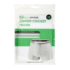 Terresphere Kids Cricket Briefs White 8, White, rebel_hi-res